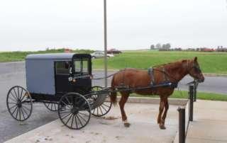 Amish Bauern